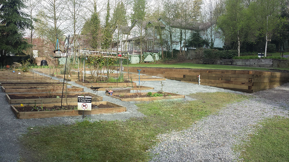 Landscape installation services including herb garden plots and wood retaining wall